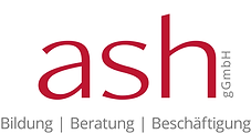ash Logo 2020 gross.png