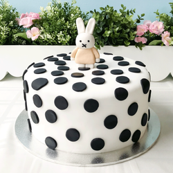 Miffy in the Polka Land