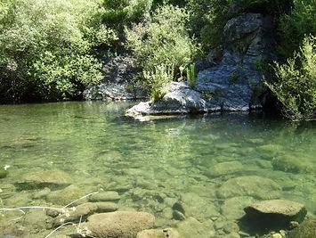 benarraba rio-genal-poza-del-letrado.jpg