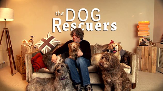 dog-rescuers