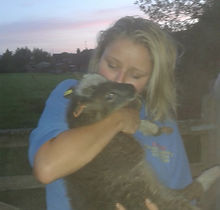 lamb cuddles at Poppies Farm.jpg