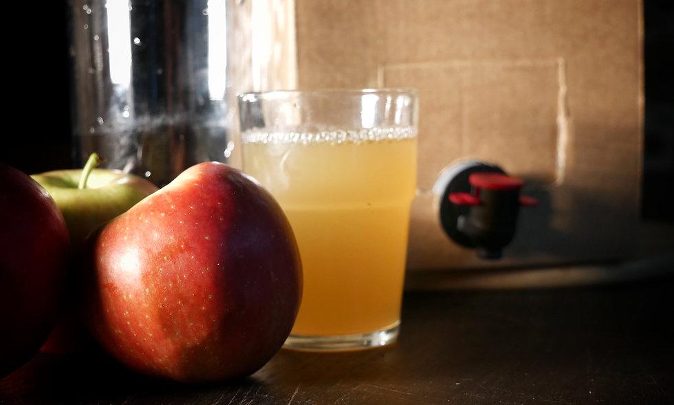 Apfelsaft aus der Meseberger Heide