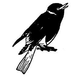 Sheffield logo.jpg