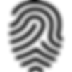 iconmonstr-fingerprint-1-240.png
