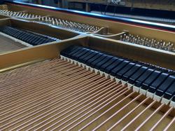 New Strings/Pins/Dampers