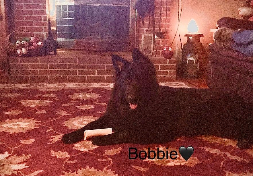 Bobbie%202020%202_edited.jpg