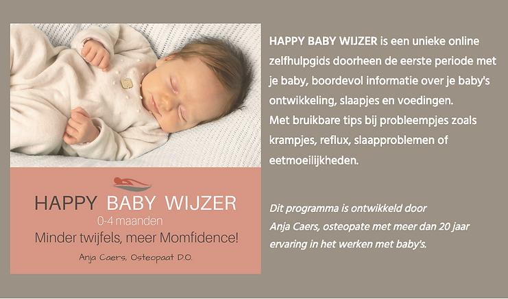Happy Baby Wijzer.png