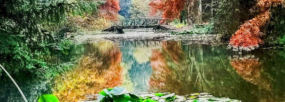 Wohnanlage Simeria - Park - 12.jpg