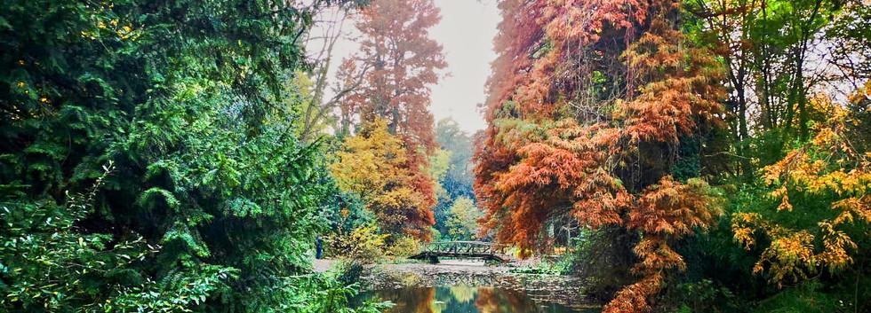 Wohnanlage Simeria - Park - 09.jpg