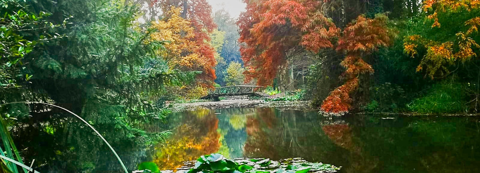 Wohnanlage Simeria - Park - 03.jpg