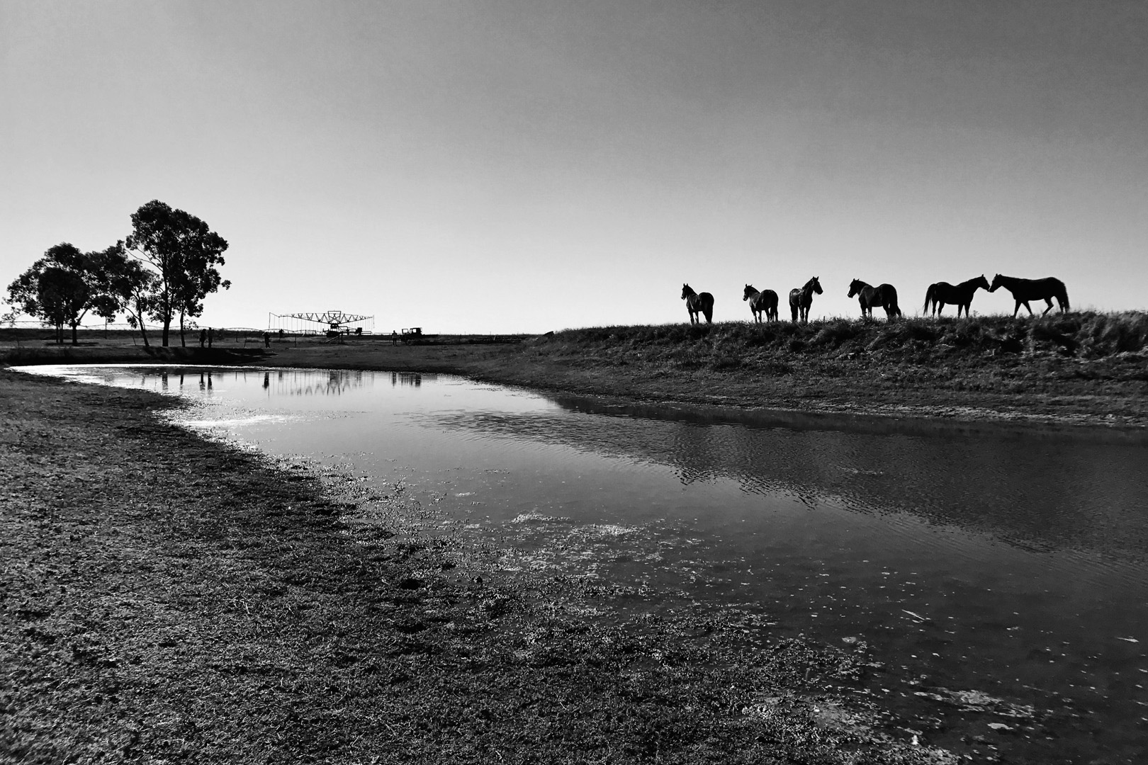 Horse Ridge
