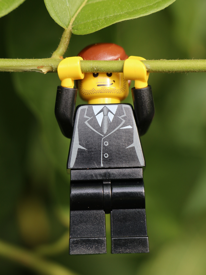 Lego Pull-ups