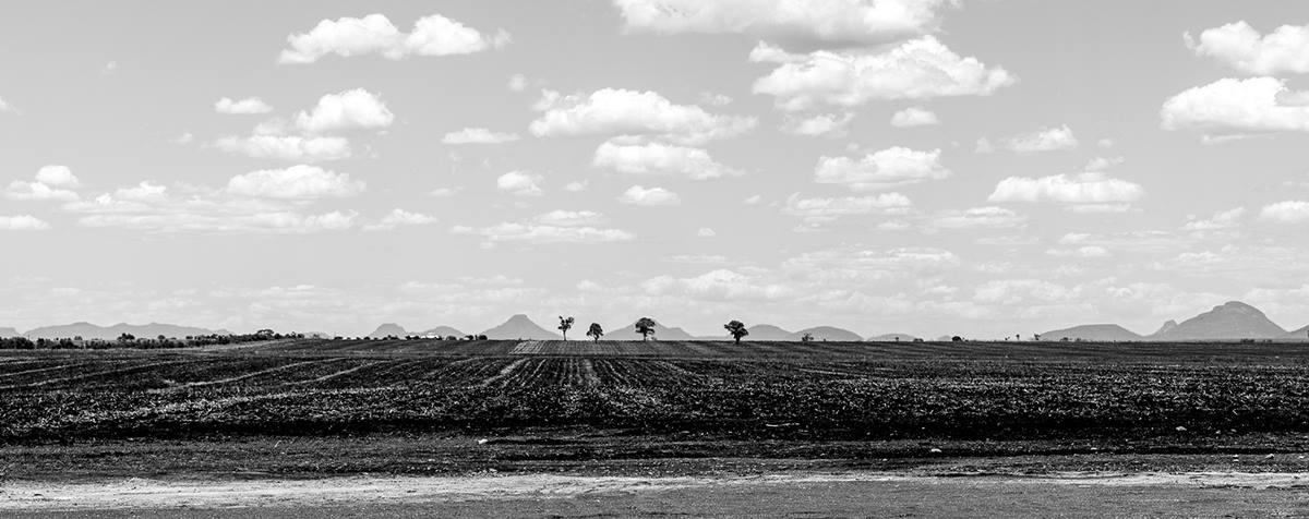 Farmland of Capella