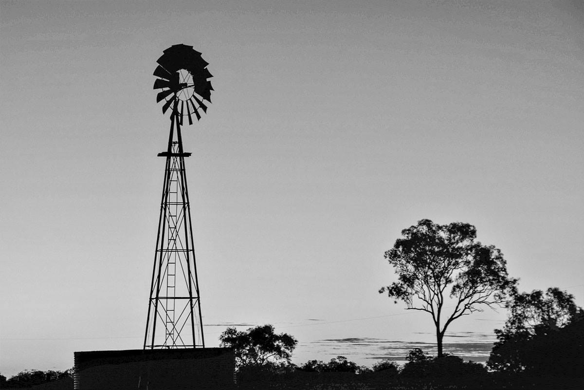 Windmills on Sunset