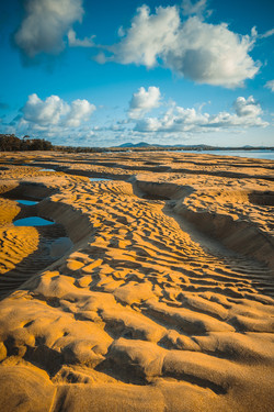 Ripples and Dunes