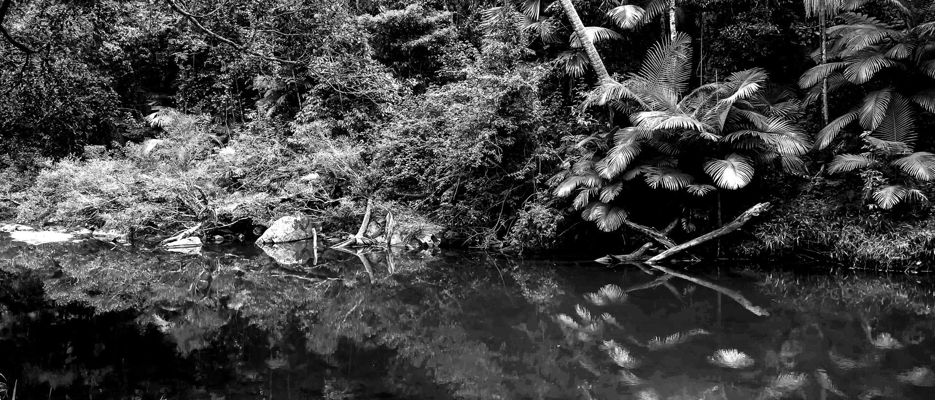Reflective Broken River, QLD