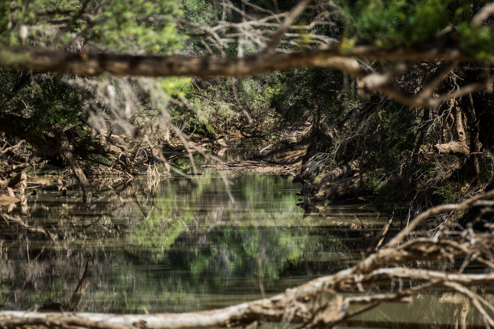 Alpha Creek