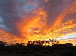 Bush Sunrise, Kings Creek Station