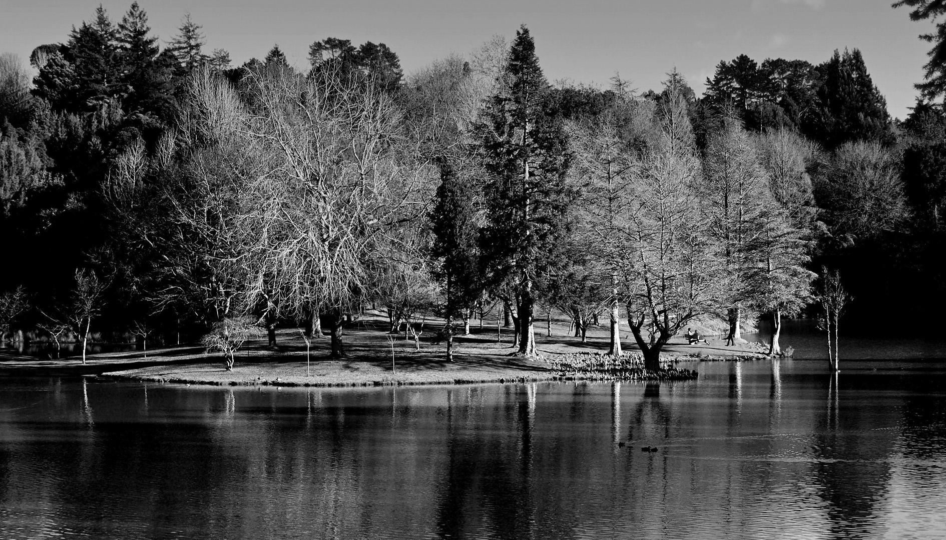 Lake McLaren New Zealand