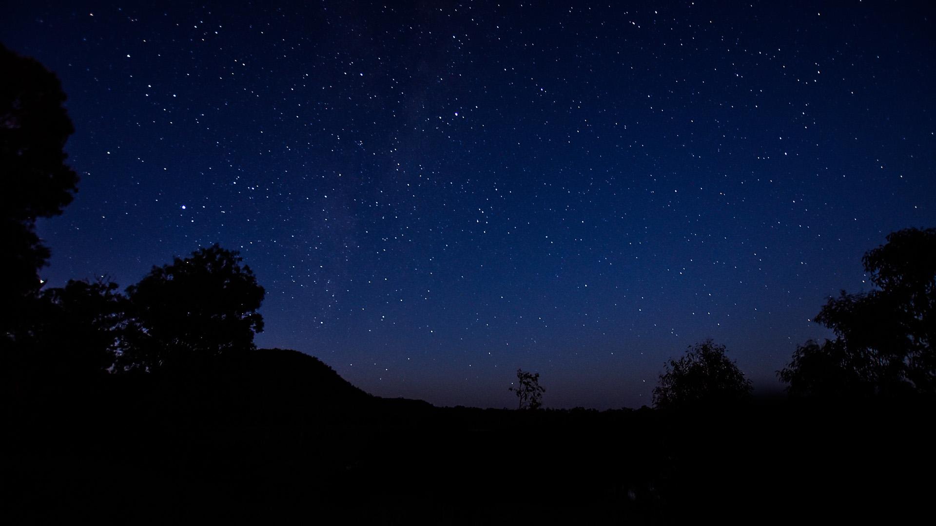 Nuga Nuga Night