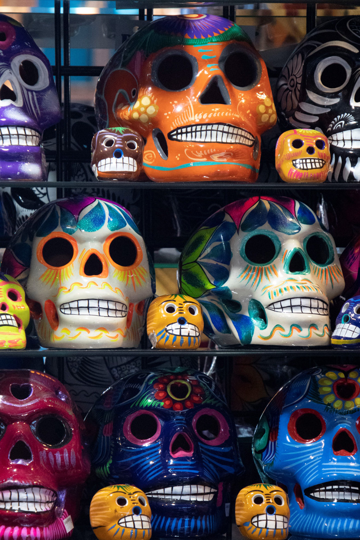 Shelves Of Skulls