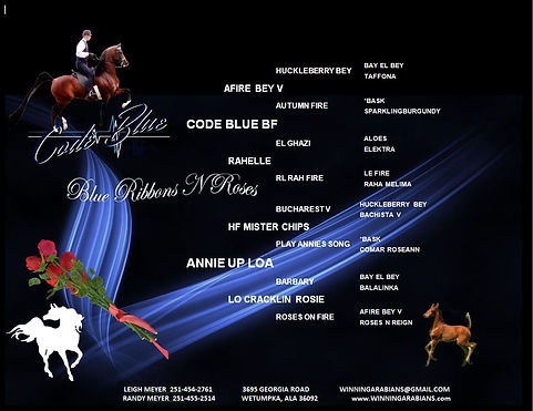 PEDIGREE - RBS - BLUE RIBBON N ROSES.jpg