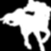 2018 Logo white Horse mask2.png