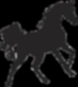 arabian horse.png
