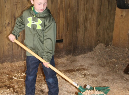 Kids Who Do Chores Are More Successful Adults