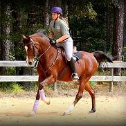 woody callie hand gallop.jpg
