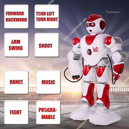 Բազմաֆունկցիոնալ խելացի ռոբոտ