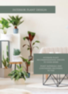 Interior-houseplant_edited.jpg