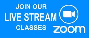 ZOOM_CLASSES.jpg