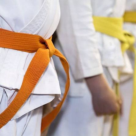 Martial_Arts_Kids_Belts.jpg