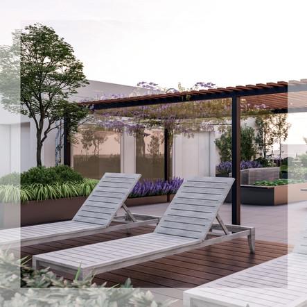 Raven House Roof Garden