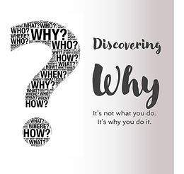 Discovering Why