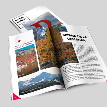 Revista Naturaleza
