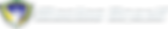 iRacingBrasil_Horizontal_White-FHD.png