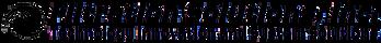 FSI Logo Black - Transparant (2).png