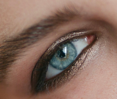 taupe smokey eye close up