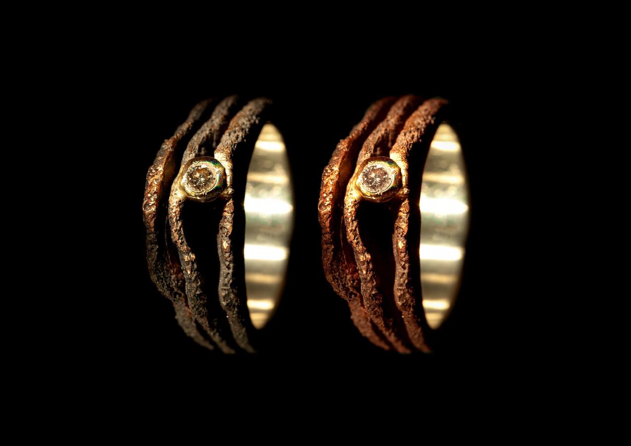 Anelli in bronzo, argento, oro e diamanti