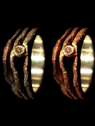 Rings in bronze, silver, gold and diamonds