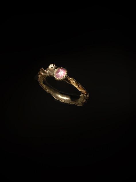 Anello in argento, ferro, oro, diamante e rubino