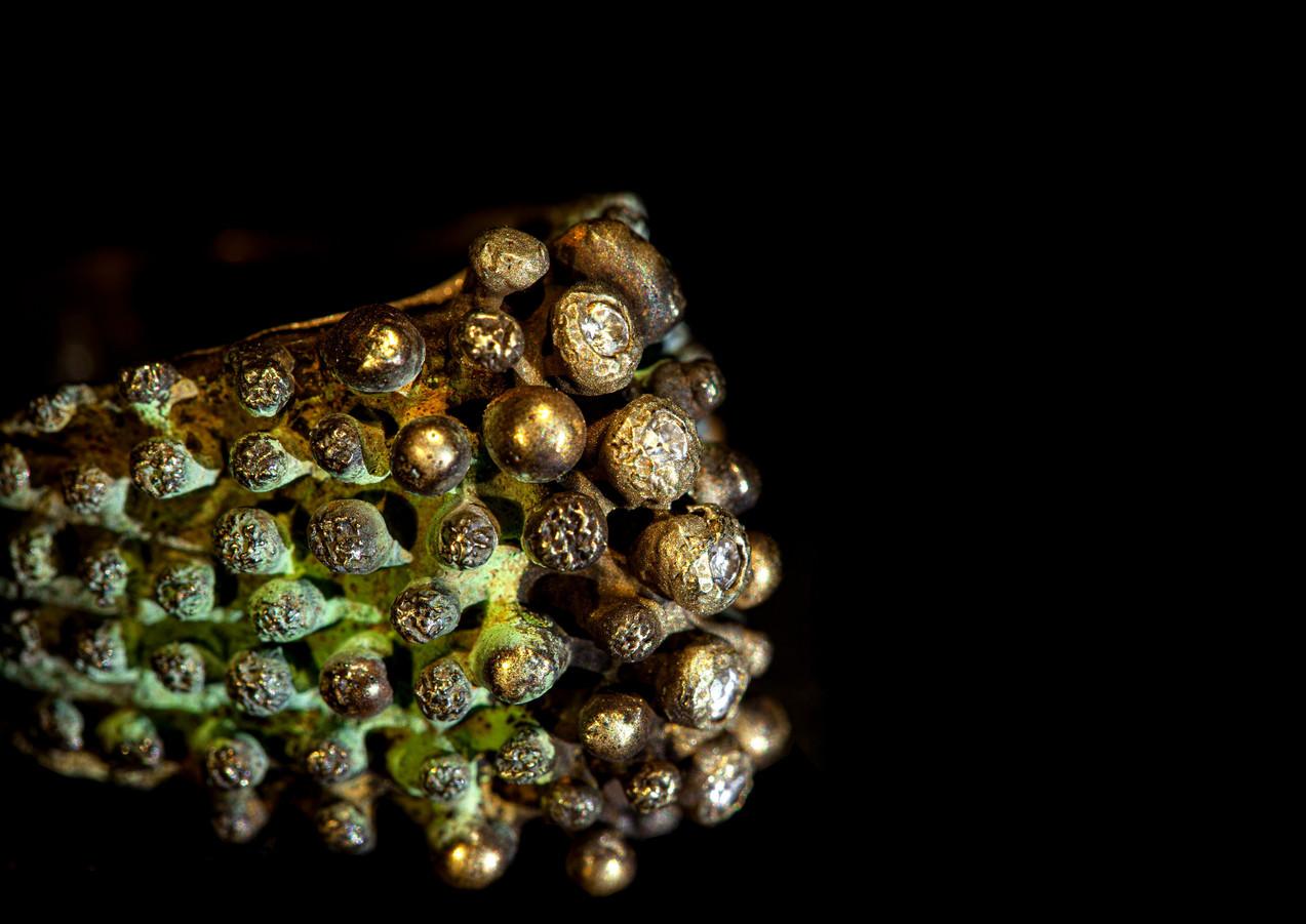 Anello in bronzo, diamanti, oro e argento