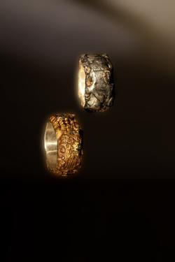 Anelli in bronzo, ferro e argento