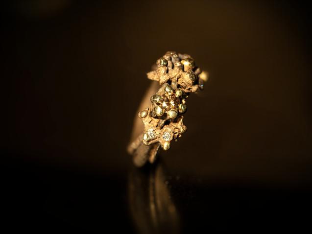 Anello in argento, ferro, oro e diamanti