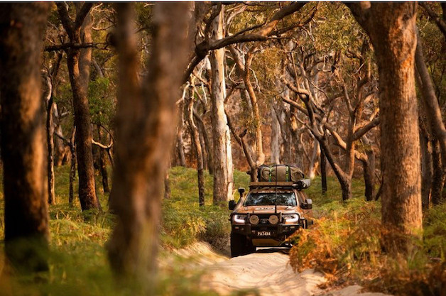 Fraser Island tours from Hervey Bay - Self-drive