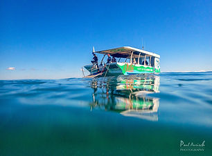 hervey-bay-eco-marine-tours.jpg