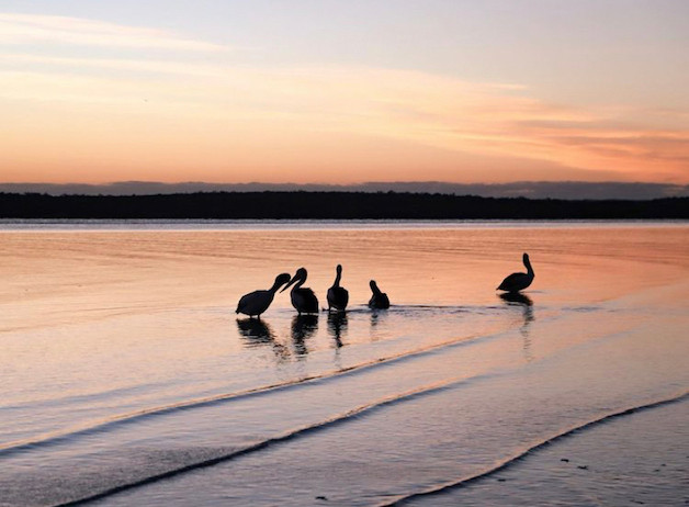 Things to do in Hervey Bay sunset