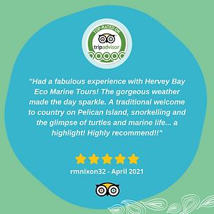 tour-reviews-hervey-bay.png